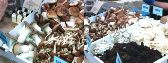 Mushrooms from The Funghi stand