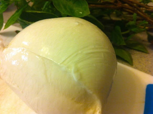 ball of buffalo mozzarella with basil leaves in the background