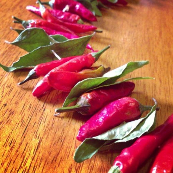 Chilli and curry leaf garland